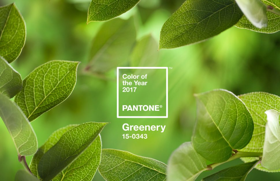 2017--greenery BMB
