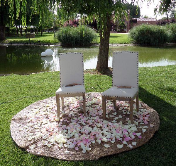 sillas y alfombra