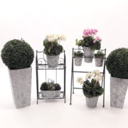 decor_plantes_lloguers_bmb