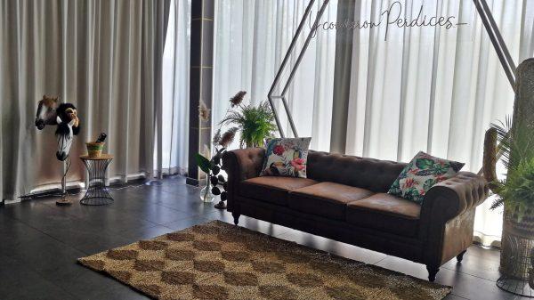 alfombra y chester